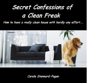 Secret Confessions of a Clean Freak